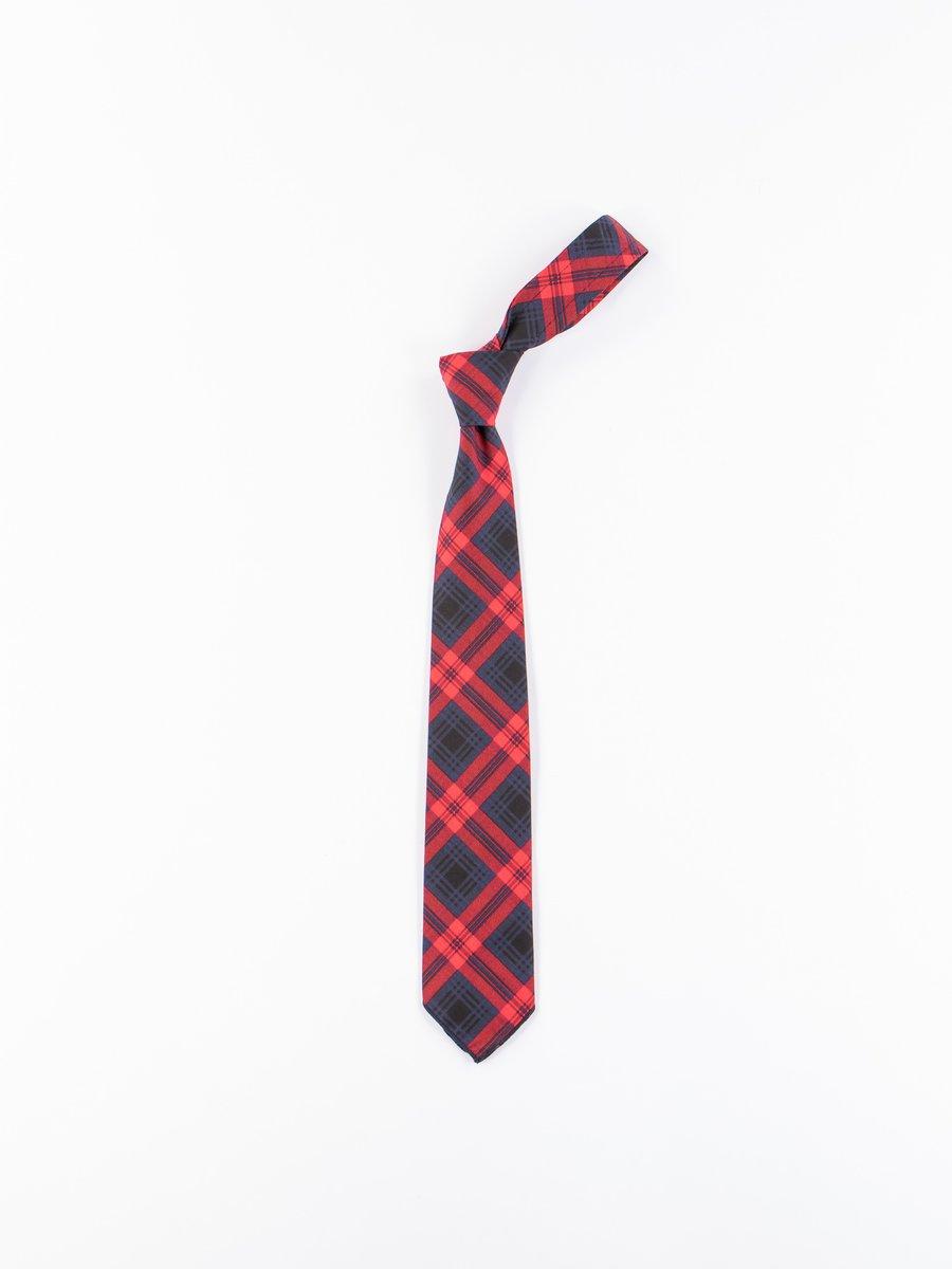 Navy/Red Cotton Printed Plaid Neck Tie